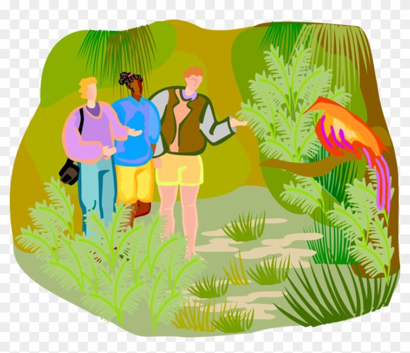 Nature Clip Art at Clker.com - vector clip art online, royalty free &  public domain
