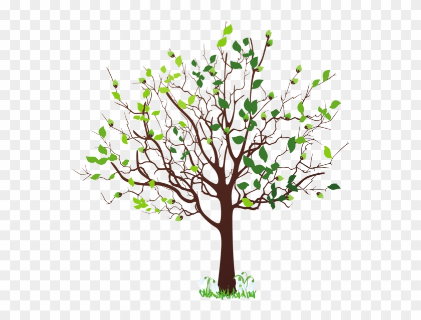 Spring Tree With Snowdrops Png - Spring Tree Clipart Png Transparent Png #347199