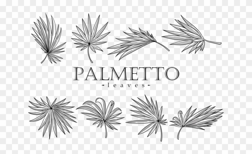 Palmetto Leaves Vector Orangereebok - Palmetto Leaf Clipart #3406657