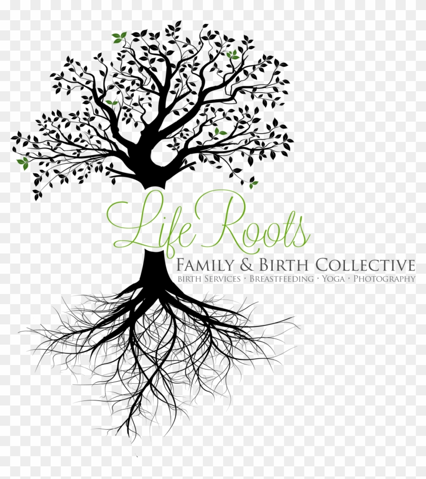 Life Collective - Tree With Roots Transparent Background Clipart #3513009