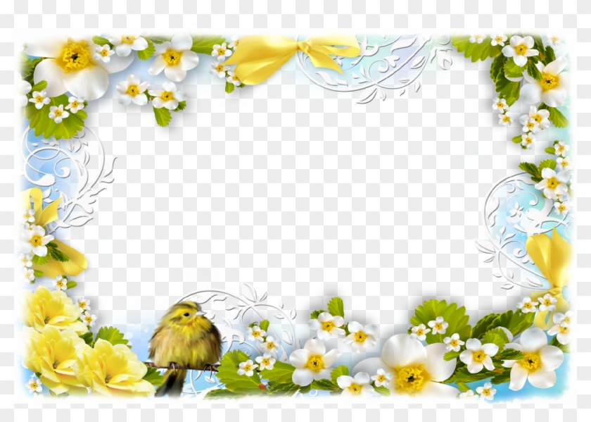 Flowers And Birds - Flower Spring Clipart Border - Png Download #3557094
