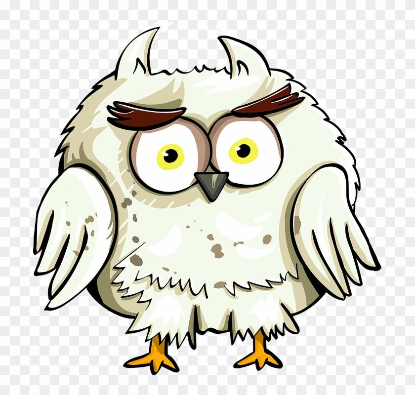 Owl Bird Eyes Cartoon Good Character Cute Animal - Harry Potter Fan Art Clipart #3639444