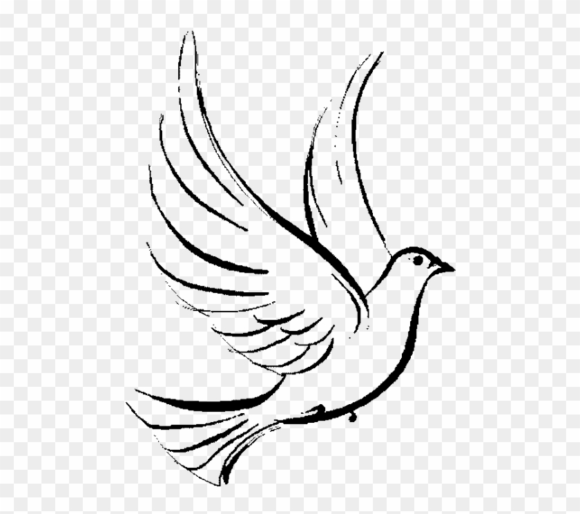 Clipart Holy Spirit Dove Png Download 3669596 Pikpng Large collections of hd transparent dove png images for free download. clipart holy spirit dove png download