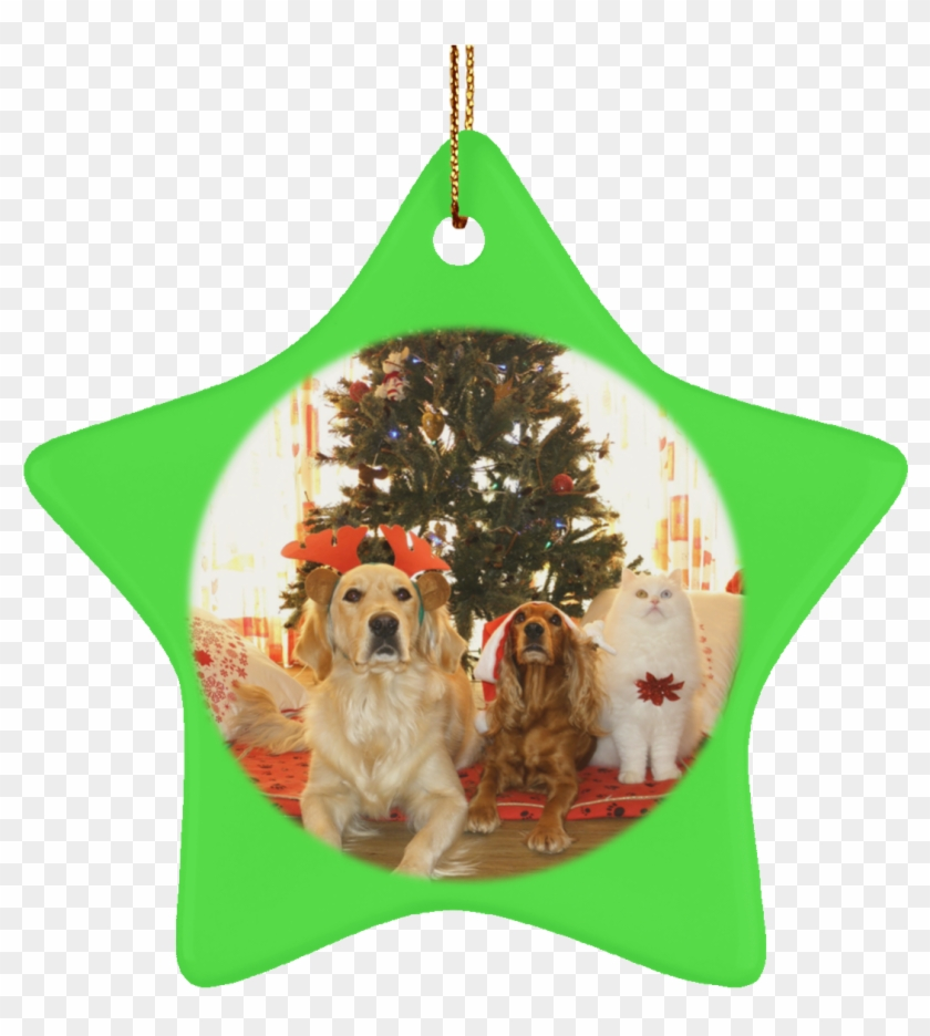 Pet Christmas Tree Ornament Cat Gift Crafted Holiday - Christmas Tree Ideas For Dogs Clipart #3686349