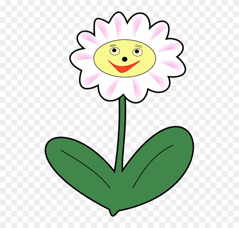 Daisy Flower Plant Face Happy Spring - Clipart Flower With Face - Png Download #3686448