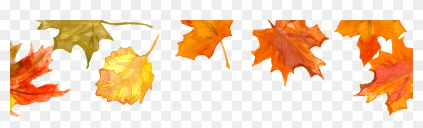 Fall Leaves - Fall November Png Clipart #376766
