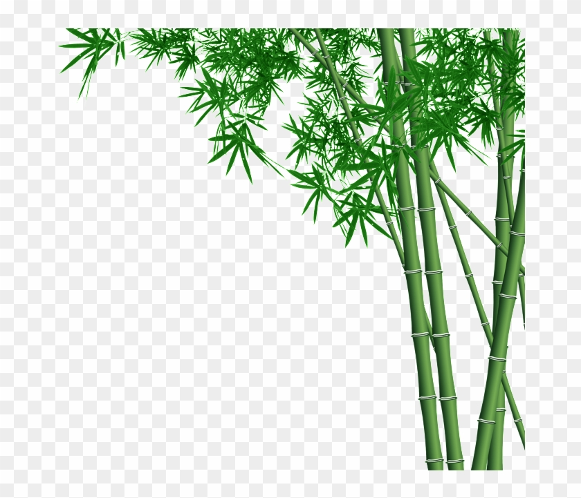 Bamboo Forest Transparent - Bamboo Design Clipart@pikpng.com