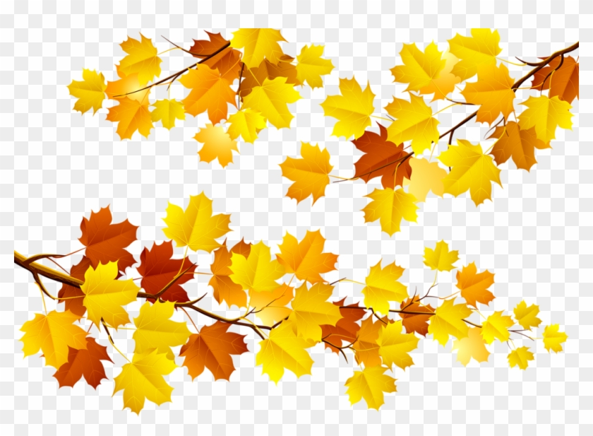 Фотки Fall Banner, Illustration, Free, Card Making, - Fun Autumn Leaves Clip Art - Png Download #3729704