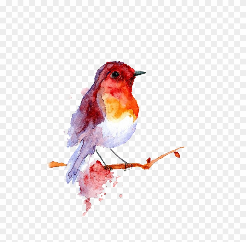 But I Didn't Have Enough Time To Get The Visual Effect - Bird T Shirts Womens Clipart #3736816