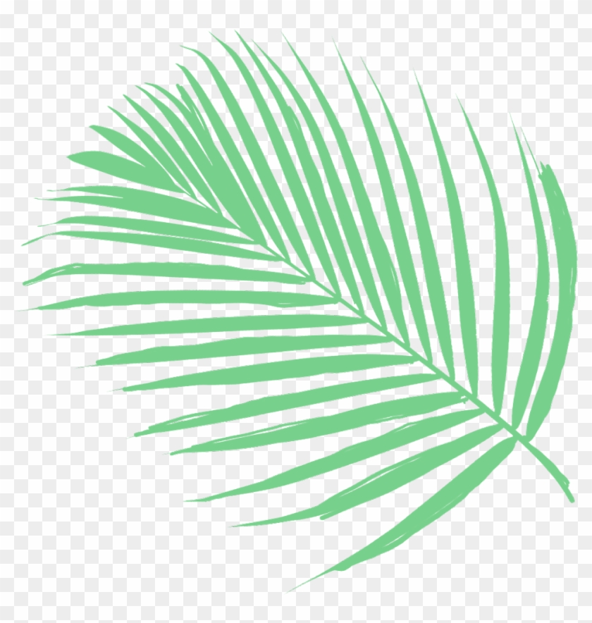Vaporwave Tumblr Aesthetic Plants Green Plant Palm Tree Clipart 3806933 Pikpng
