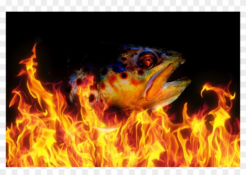 Fire Generic Clipart #3821246