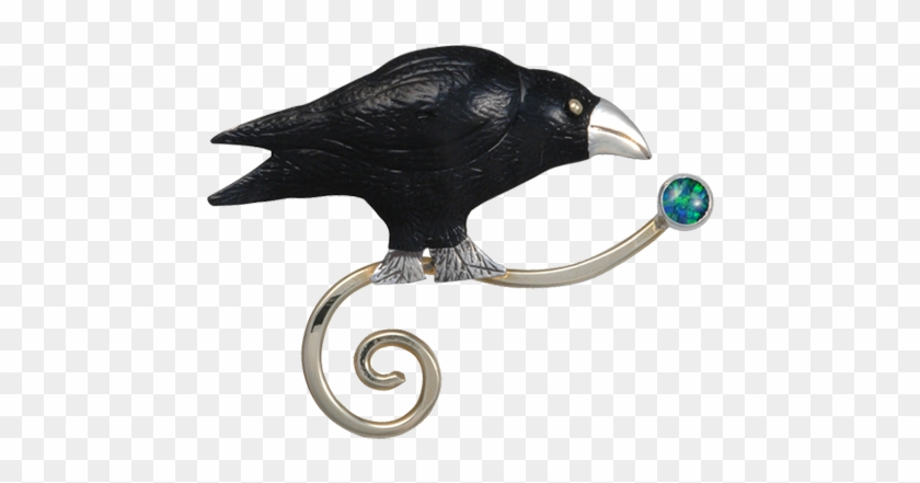 American Crow Clipart #3845165