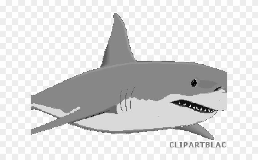 Shark Clip Art - Png Download #3890785
