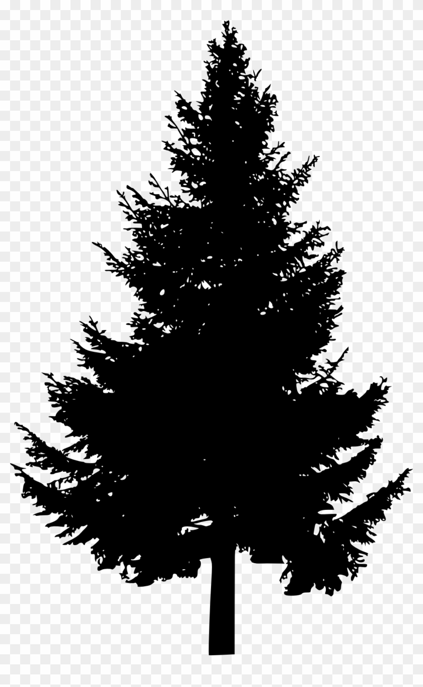 Free Download - Clipart Pine Tree Silhouette, HD Png ...