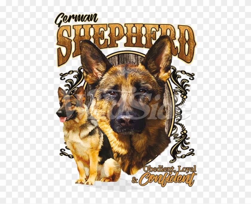 German Shepherd Obedient - Old German Shepherd Dog Clipart #409035