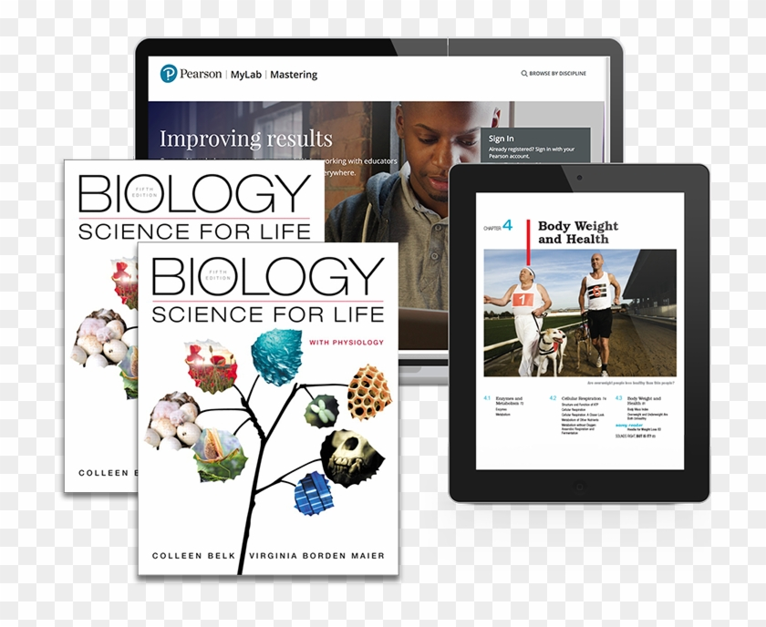 Belk, Border & Maier, The Biology - Biology Science For Life With Physiology 5th Edition Clipart #4041759