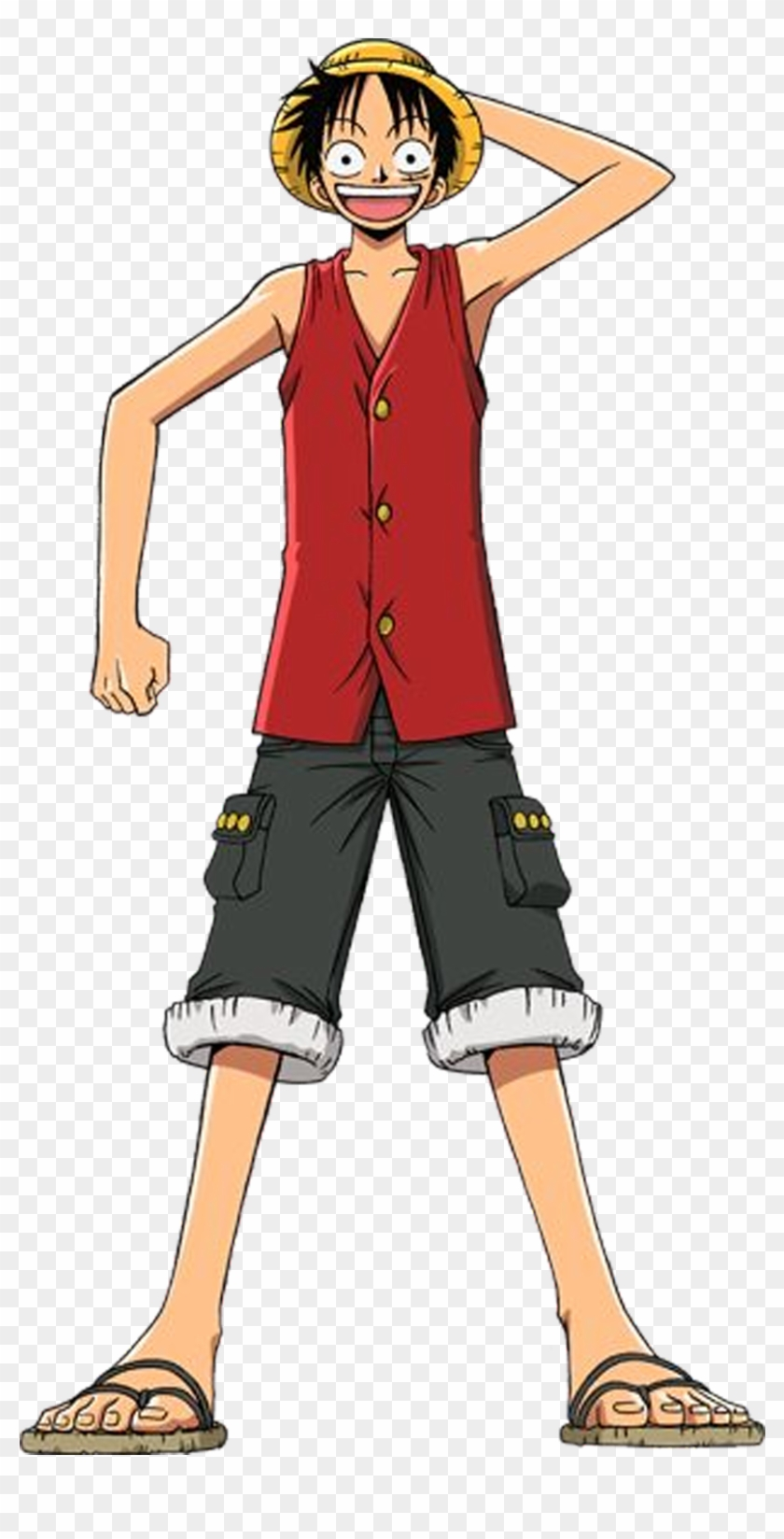 Monkey D Luffy Water One Piece Luffy Full Body Hd Png