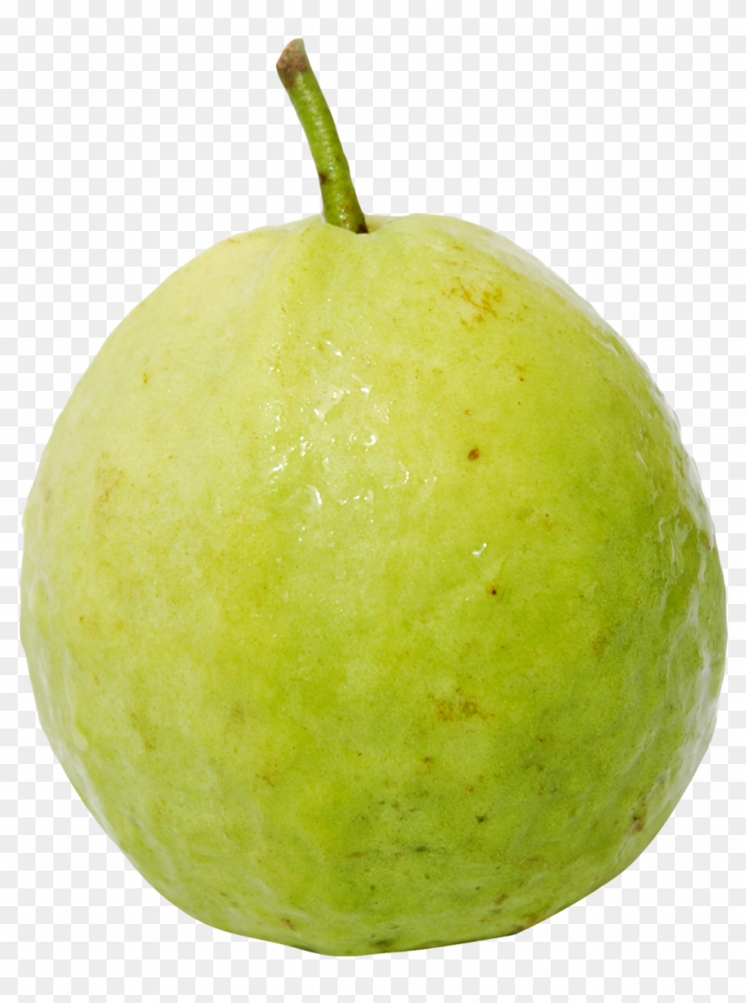guava png png image of guava clipart 4073033 pikpng pikpng