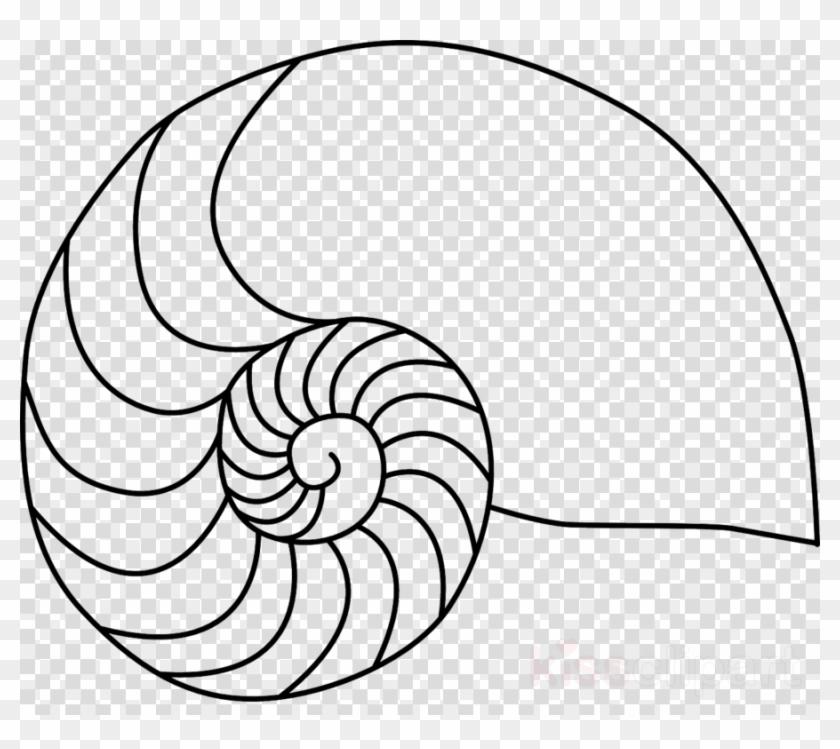 Nautilus Shell Clip Art Clipart Nautilidae Chambered - Vivekananda Images National Youth Day - Png Download #4095104