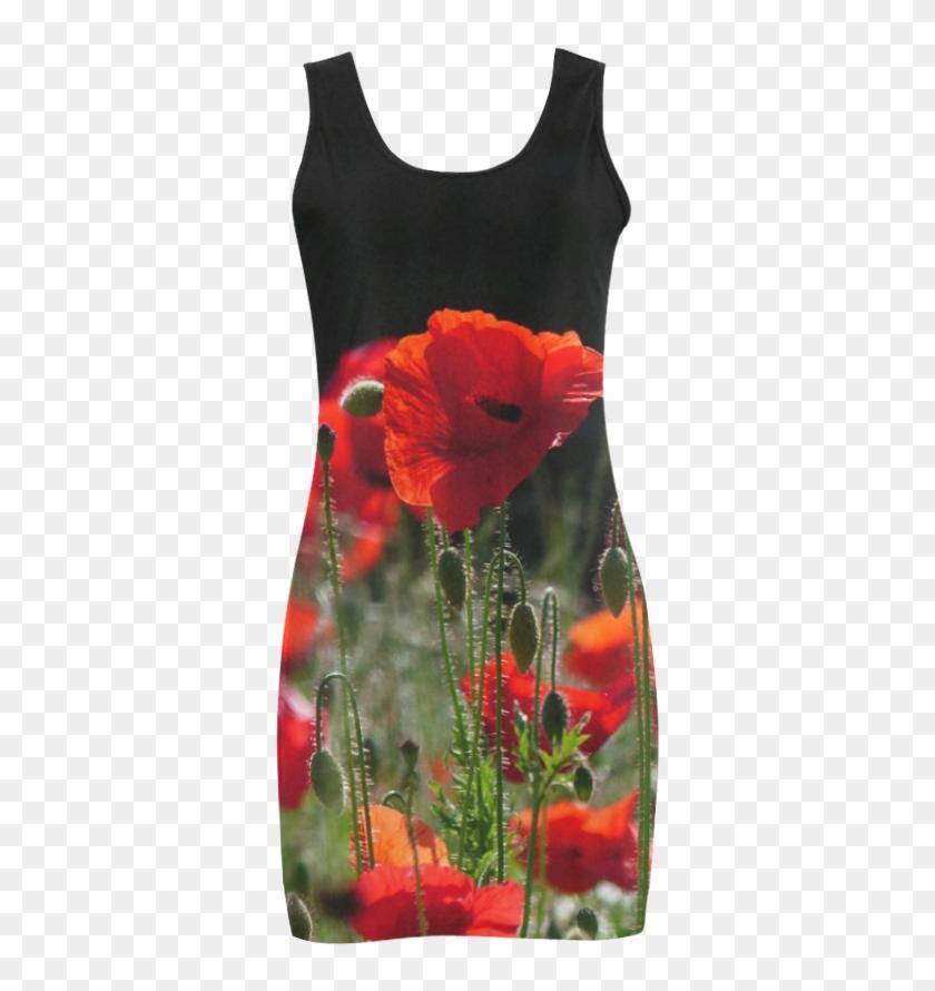 Red Poppies, Poppy, Nature 001 - Corn Poppy Clipart #4139634