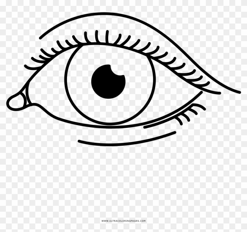 Eye Coloring Page Eyes Coloring Pages Png Clipart 4276206 Pikpng