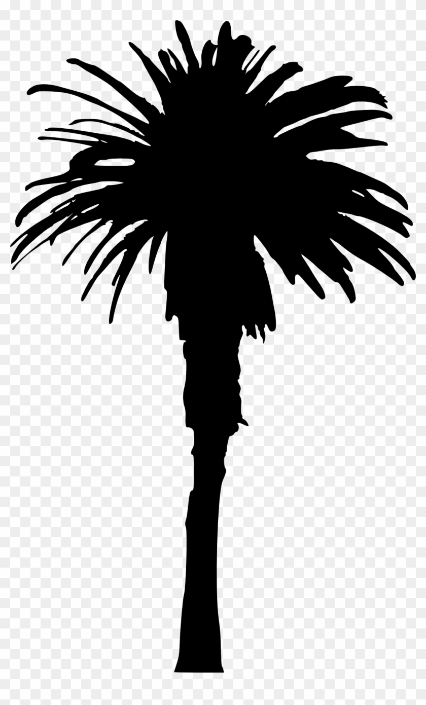 15 Palm Tree Silhouettes Png Transparent Background - Single Palm Tree Silhouette Clipart #447389