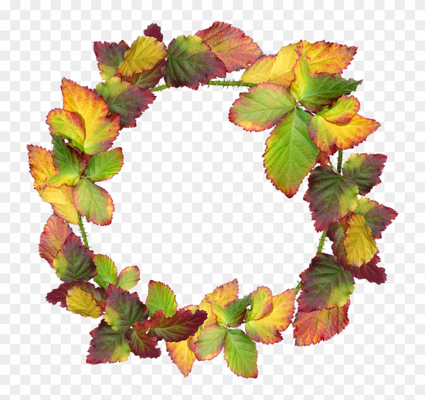 Wreath, Leaves, Autumn, Fall, Nature, Garden, Frame - Corona De Hojas Otoño Png Clipart #4535685