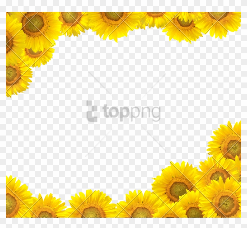 Free Png Sunflower Frame Png Png Image With Transparent - Sunflower Border Design Clipart #4617031