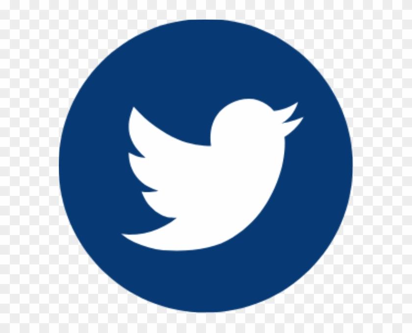 Twitter - Grey Twitter Logo Transparent Clipart@pikpng.com