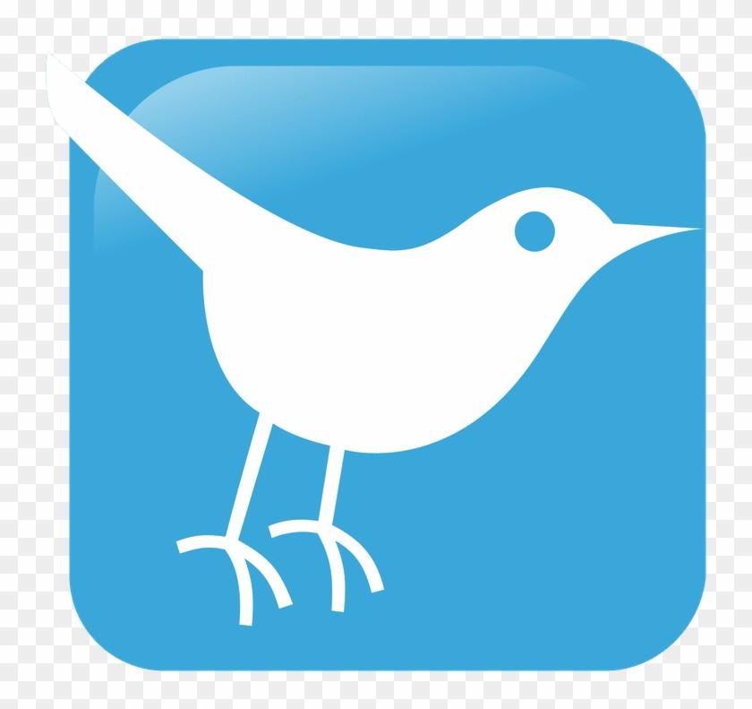 Twitter Blue Bird Icon - Social Media Clipart #4733784