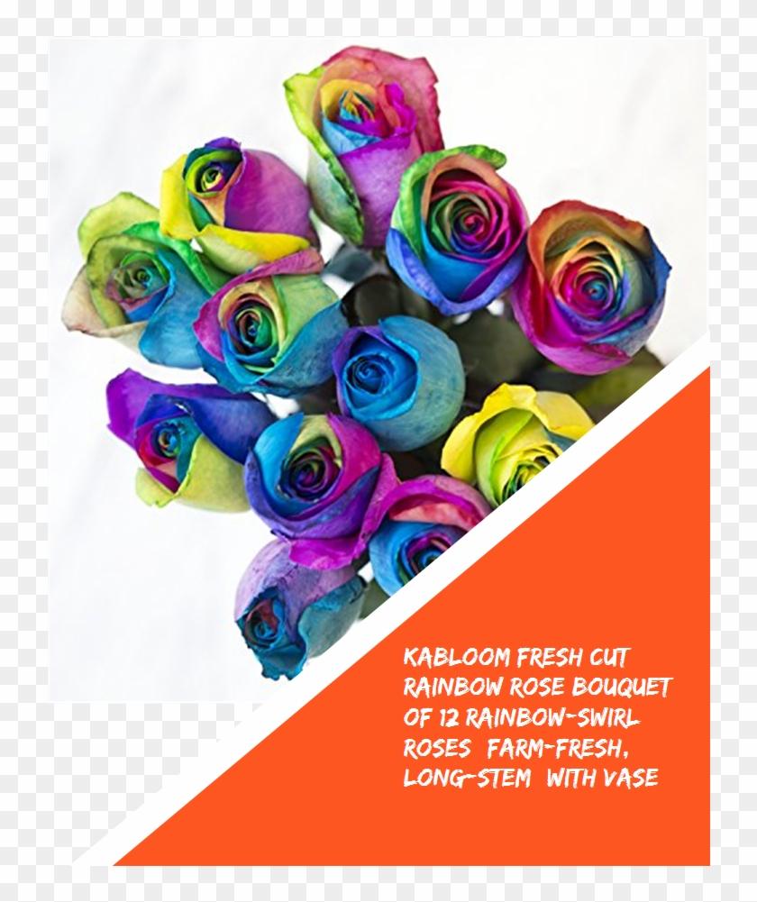 Kabloom Fresh Cut Rainbow Rose Bouquet Of 12 Rainbow - Rainbow Rose Clipart #4779243