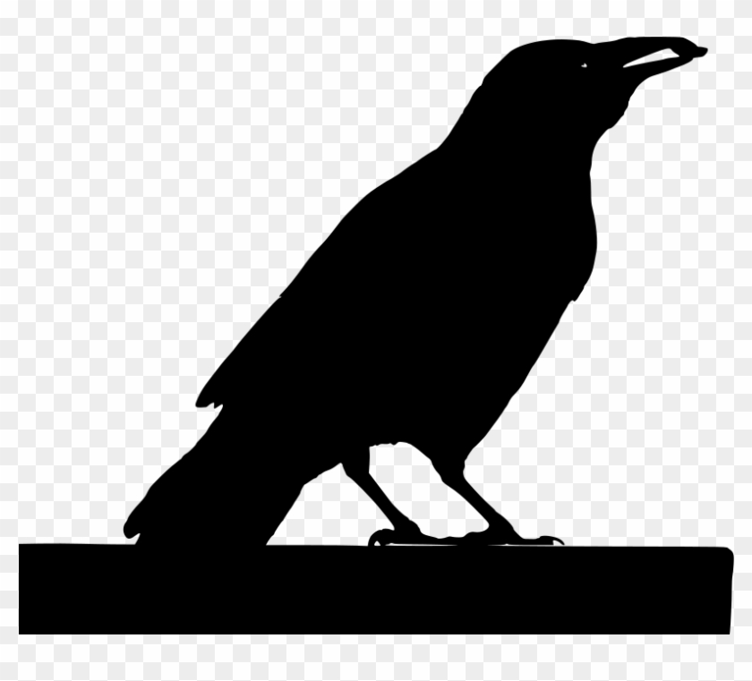 Download Png - Crow Clipart #4792132