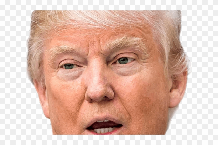 Head Clipart Donald Trump - Meme Im Already Tracer - Png Download #487736