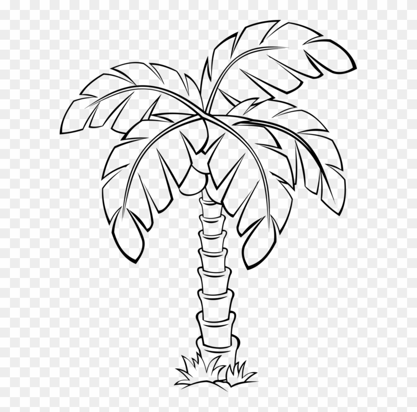 Sabal Palm Palm Trees Flowering Plant Drawing - Palm Tree Clipart Outline - Png Download #4892120