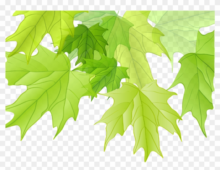 #ftestickers #tree #leaves #maple #corner #border - اوراق الشجر Png Clipart #4913202
