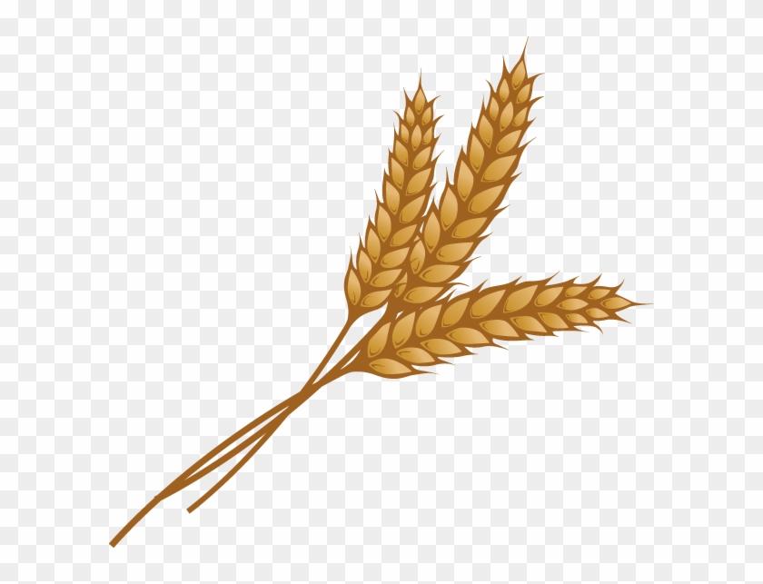 Grain Png Image - Grain Wheat Clip Art Transparent Png #54468