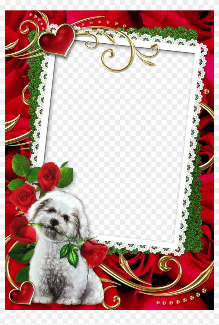 Lace Border Picture Frame With Cute Puppy And Roses - Red Wedding Frames Png Clipart #502070
