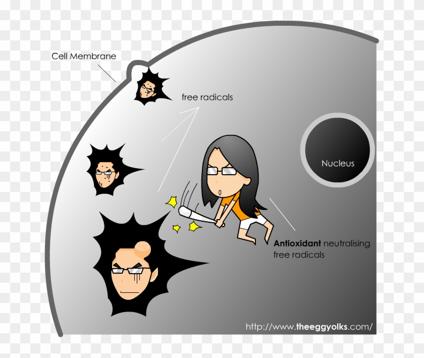 Collagenmax Bright Doesn't Only Helps You To Restore - Cartoon Clipart #5059825