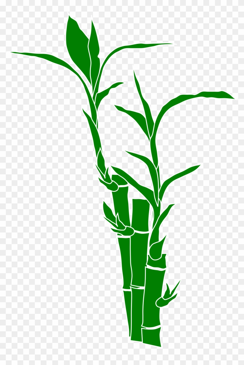 download and use bamboo png clipart - clip art bamboo transparent png  (#516538) - pikpng  pikpng