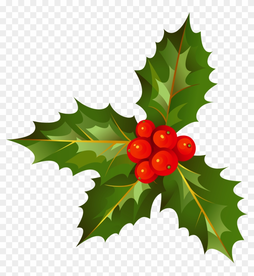 Download - American Holly Clipart #517048