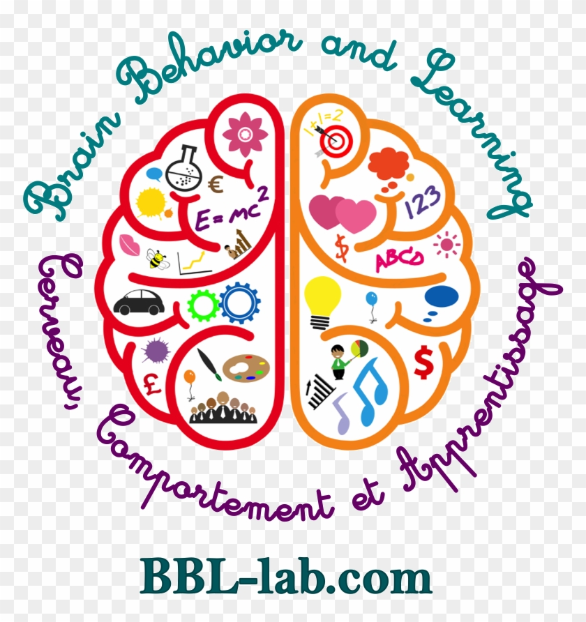 Brain, Behavior And Learning - Brain Clipart Left Right - Png Download #5114274