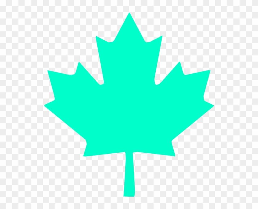 Wbp Maple Leaf Canadian Maple Leaf Png Transparent Png