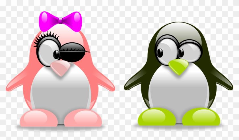 Download Penguins Png Transparent Images Transparent - Cool Penguin Clip Art #525878
