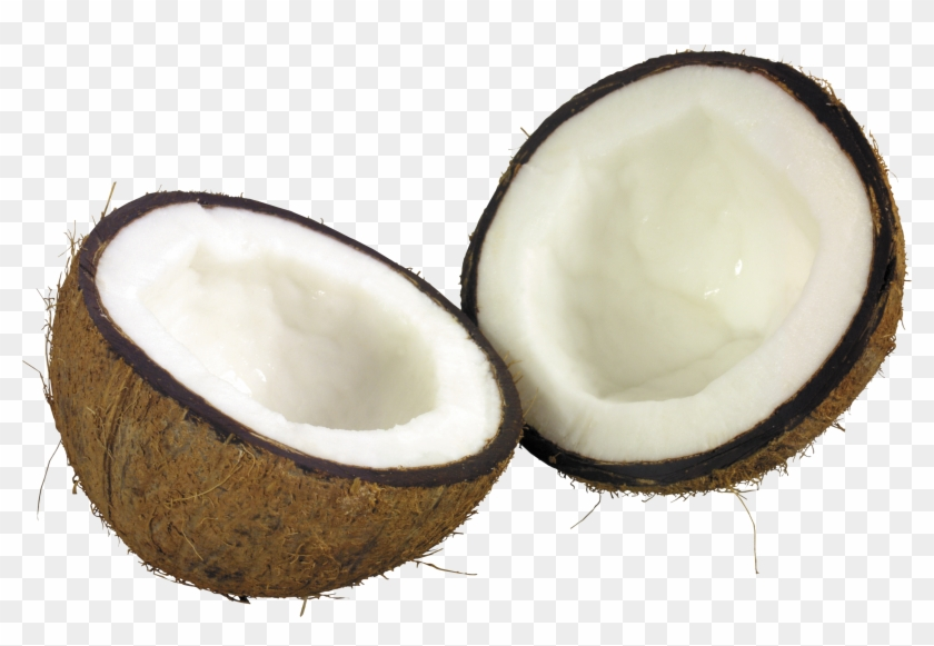 Coconut - Coconut Png Clipart@pikpng.com