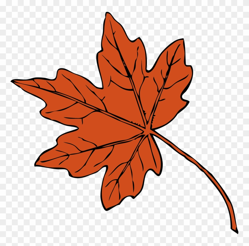 Fall Drawing Autumn Leaves - Maple Leaf Clipart, HD Png Download #5408163