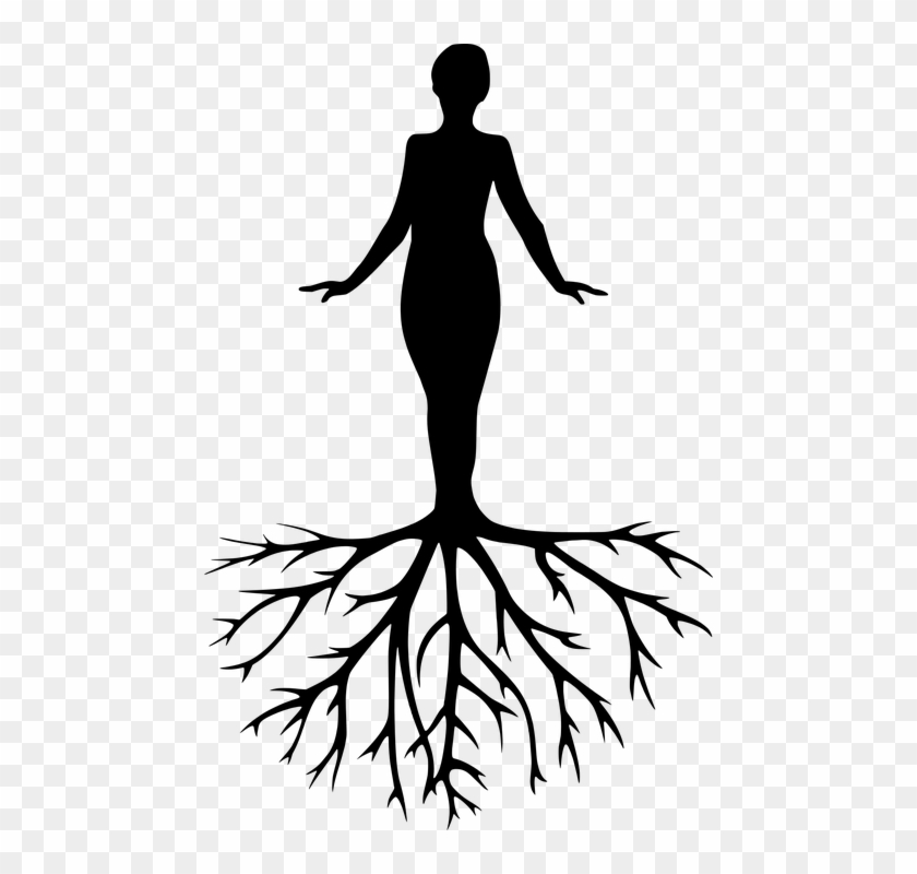 Women Tree Yoga Meditation Harmony Silhouette Yoga Pictures Black And White Clipart 5492529 Pikpng