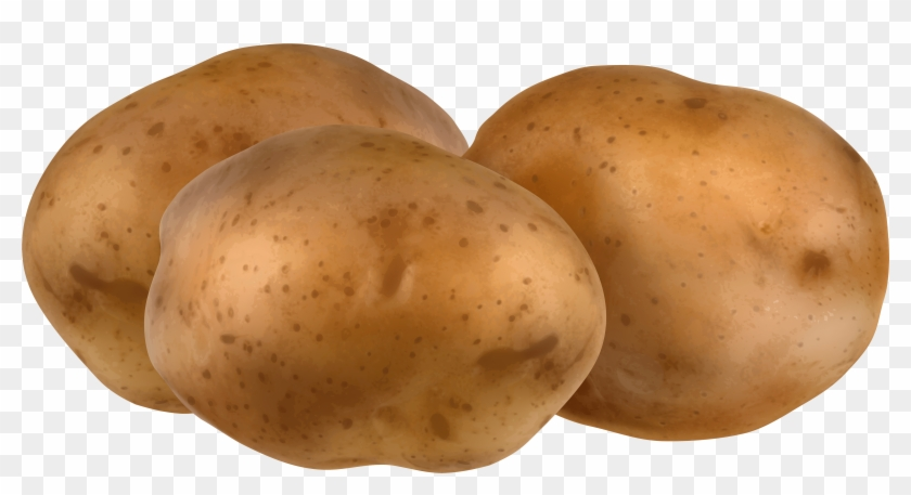 Cute Potato Png Potatoes Clipart Transparent Png 555770 Pikpng Over 200 angles available for each 3d object, rotate and download. cute potato png potatoes clipart