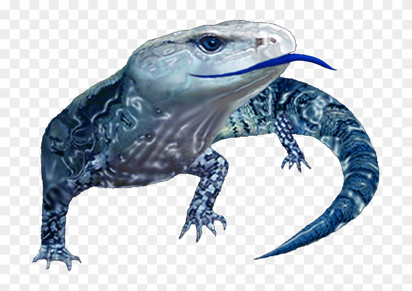 Blue Tongue Management Established - Monitor Lizard Clipart #5533016