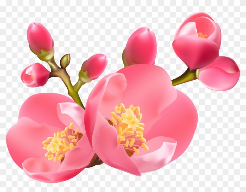 Spring Transparent Png Clip - Spring Blossom Clip Art #5555730