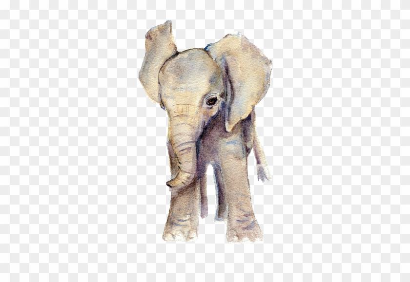 Elephant Png Tumblr Watercolour Baby Elephant Clipart 568852 Pikpng Download the perfect baby elephant pictures. elephant png tumblr watercolour baby